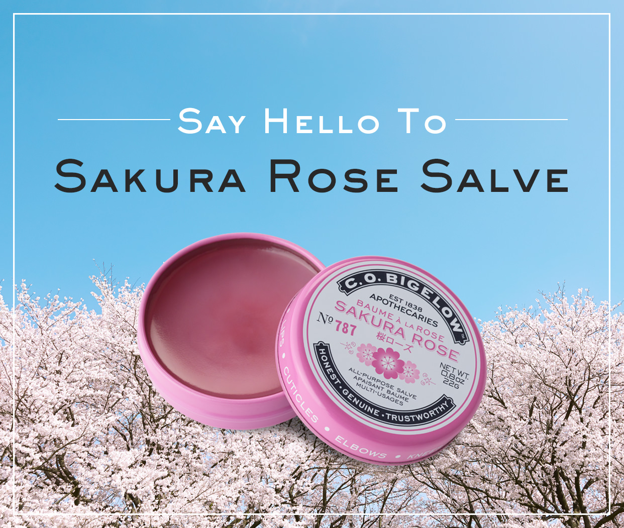 sakura rose salve